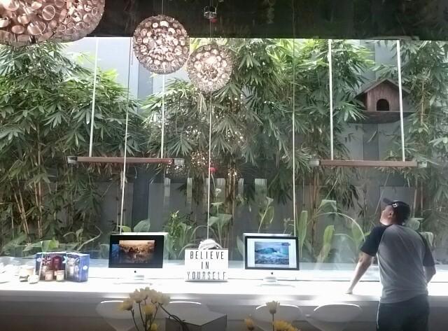 Alle Sedang Mencari Cendrawasih, Lulu Lala Resort Hotel FM7